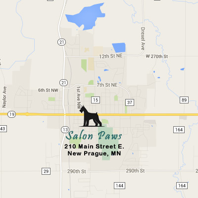 Salon Paws Dog Grooming in New Prague, MN 56071